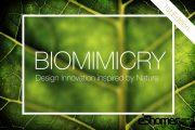 مسابقه بین المللی نوآوری طراحی الهام گرفته از طبیعتbiomimicry