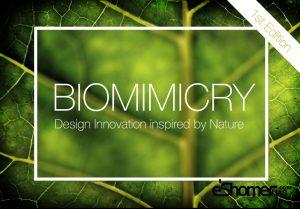مجله خبری ایشومر Biomimicry-competition-300x209 biomimicry-competition