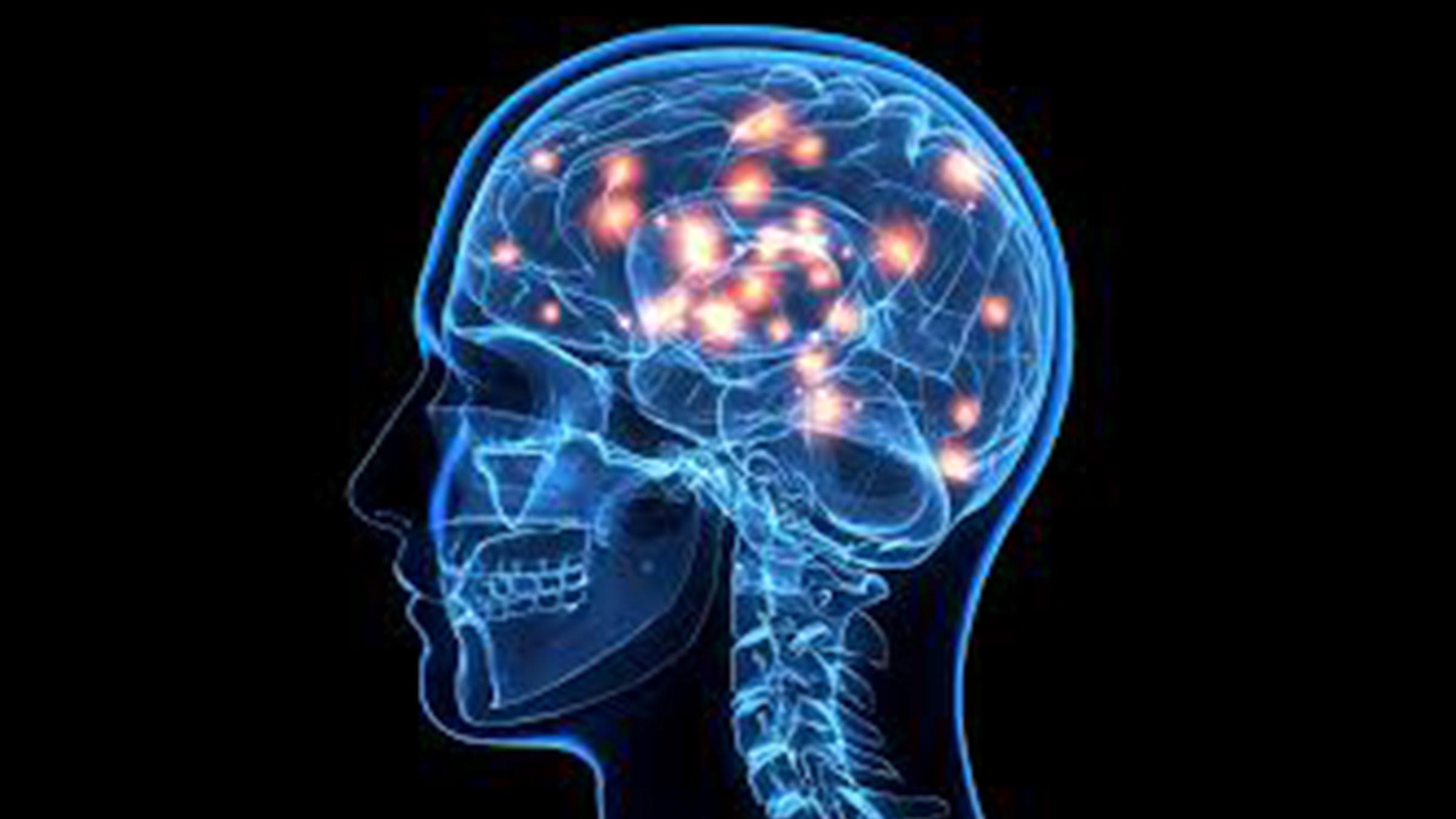 مجله خبری ایشومر IMG_2574 در آينده عفريت مرگ ديرتر به سراغ بشر مي آيد. سبک زندگي سلامت و پزشکی  مهندسي مغزي مرگ مجله كبد قلب عفريت عضو ضربه سلولهاي سلول ساخت ديرتر دكتر خبري پزشكي بنيادي بشر ايشومر اهدا آينده آزمايشگاه