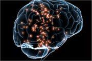 بازگردانی حافظه کوتاه مدت انسانها توسط تحریک مغز