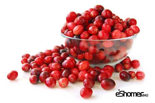 blueberries-mag-eshomer