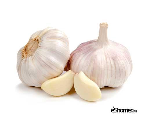 garliccloves-mag-eshomer