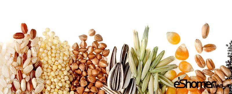 مجله خبری ایشومر Seeds-and-grains-mag-eshomer تخمه ها و دانه هایی که تأثیر زیادی در سلامتی گوارش دارند سبک زندگي سلامت و پزشکی  گوارش کنجد کتان شاهدانه سیاه سلامتی زیره دانه تخمه تأثیر