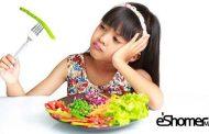 چهار راهکار خوردن برای افرادی که میوه تازه نمیخورند