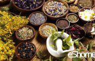 درمان خانگی سوء هاضمه با گیاهان دارویی