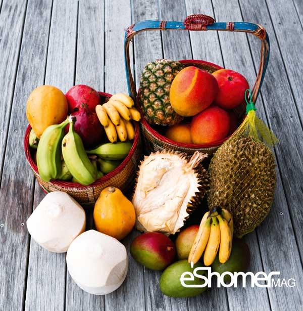 مجله خبری ایشومر Tropical-Fruit-2-mag-eshomer انواع میوه های استوایی وخواص شگفت انگیز درمانی آنها(قسمت دوم) آشپزی و غذا سبک زندگي  میوه های شگفت درمانی خواص چمپداک انواع انگیز استوایی استارفروت CEMPEDAK