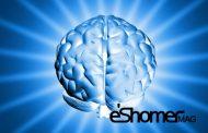 راهکارهای طلایی برای تقویت مغز