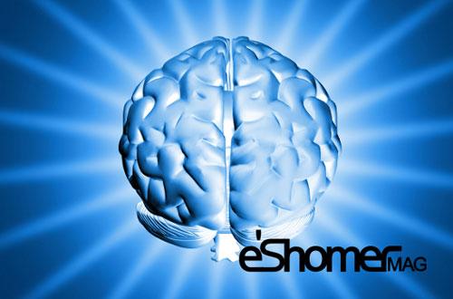 مجله خبری ایشومر brain-boost-mag-eshomer راهکارهای طلایی برای تقویت مغز سبک زندگي سلامت و پزشکی  ورزش مغز متعادل طلایی سلامتی رژیم راهکار تقویت آرامش