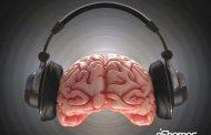 بهبود عملكرد مغز با موسیقی های مختلف