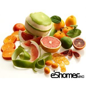 مجله خبری ایشومر citrus-medical-mag-eshomer-300x300 چربی سوزی و جلوگیری از رسوبات در عروق به کمک مرکبات سبک زندگي سلامت و پزشکی  مرکبات کمک عروق سوزی رسوبات چربی جلوگیری