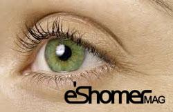 مجله خبری ایشومر eye-green-mag-eshomer تاثیر رنگ چشم در خلق و خوی و احساسات ( روانشناسی ) سبک زندگي سلامت و پزشکی  قهوه سبز روانشناسی رنگ خلق و خو خاکستری چشم ای افراد احساسات آبی