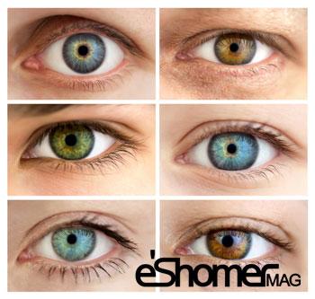 تاثیر رنگ چشم در خلق و خوی و احساسات ( روانشناسی )