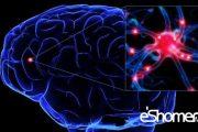 آسیب های جدی مغز بر اثر غذا خوردن درنیمه شب