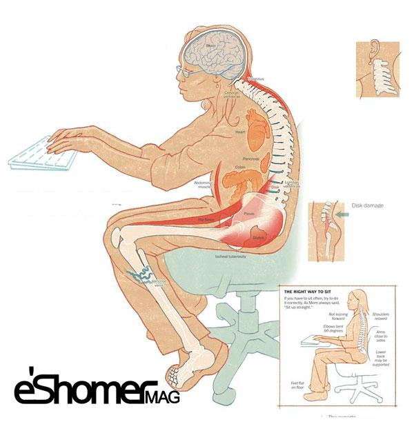 مجله خبری ایشومر The-effects-of-prolonged-sitting-on-the-members-of-the-body-mag-eshomer تاثیرات نشستن طولانی مدت بر روی اعضا بدن سبک زندگي سلامت و پزشکی  نشستن مدت طولانی روی تاثیرات بدن اعضا