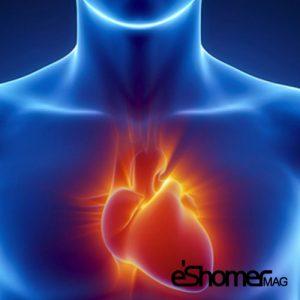 مجله خبری ایشومر -مستقیم-درمان-ناباروری-و-ریسک-بالای-بیماری-قلبی-300x300 رابطه مستقیم درمان ناباروری و ریسک بالای بیماری قلبی سبک زندگي سلامت و پزشکی  نارسایی ناباروری مستقیم قلبی سلامت و پزشکی سکته ریسک درمان بیماری های قلبی درمان بیماری
