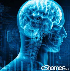 مجله خبری ایشومر راز-جوان-ماندن-مغزچیست-مجله-خبری-ایشومر-295x300 راز جوان ماندن مغزچیست سبک زندگي سلامت و پزشکی  نارگیل مغز ماندن سلامت روغن راز چیست جوان