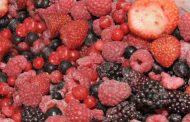 روش صحیح فریز کردن میوه ها را بدانیم