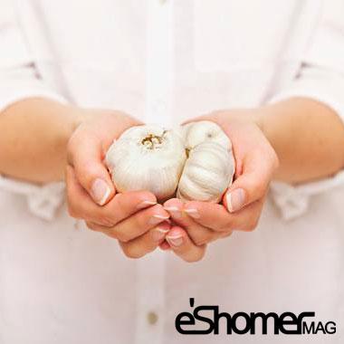 مجله خبری ایشومر Garlic-health-benefits-of-the-use-and-maintenance-mag-eshomer سیر خواص درمانی بهترین روش مصرف و نگهداری سبک زندگي سلامت و پزشکی  نگهداری مصرف سیر سرطان روش درمانی خواص بهترین