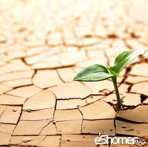 مجله خبری ایشومر earthday_soil روشی معجزه آسا برای حل نگرانی در افراد سبک زندگي کامیابی  نگرانی معجزه روشی روحی حل جسمی برای افراد آسا