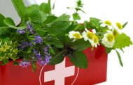 تنتور گل بابونه برای انقباض عضلات مربوط به قاعدگی