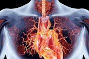 روزقبل و روز عمل جراحی قلب به چه آمادگی هایی نیازمندید
