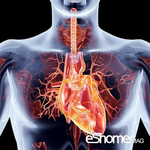 مجله خبری ایشومر روزقبل-و-روز-عمل-جراحی-قلب-به-چه-آمادگی-هایی-نیازمندید-مجله-خبری-ایشومر روزقبل و روز عمل جراحی قلب به چه آمادگی هایی نیازمندید سبک زندگي سلامت و پزشکی  قلب عروق کرونر سلامت درمانی درمان بیماری های قلبی خواص درمانی خواص پزشکی