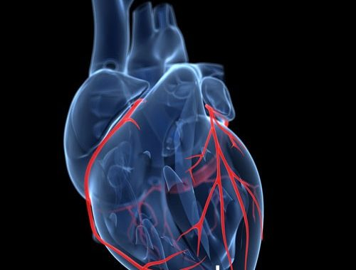 10 نکته که پس از ترخیص از بیمارستان بعد از عمل جراحی قلب باید رعایت شود