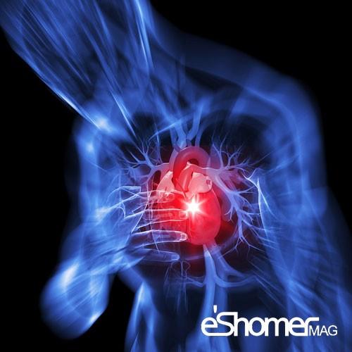 مجله خبری ایشومر رعایت-بهداشت-و-نظافت-شخصی-پس-از-حمله-قلبی-مجله-خبری-ایشومر رعایت بهداشت و نظافت شخصی پس از حمله قلبی سبک زندگي سلامت و پزشکی  قلب عروق کرونر سلامت درمانی درمان بیماری های قلبی درمان خواص درمانی حمام پزشکی
