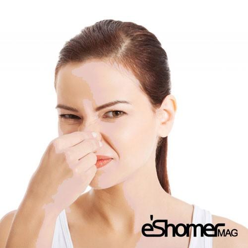 مجله خبری ایشومر علت-های-بوی-بد-بدن-و-راهکارهای-درمان-آن-مجله-خبری-ایشومر علت های بوی بد بدن و راهکارهای درمان آن سبک زندگي سلامت و پزشکی  سلامت درمانی درمان خواص درمانی پوست پزشکی