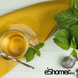 مجله خبری ایشومر دمنوش-بادرنجبویه-آرام-بخشی-قوی-برای-اعصاب-مجله-خبری-ایشومر-300x300 دمنوش بادرنجبویه آرام بخشی قوی برای اعصاب تازه ها سبک زندگي  نوشیدنی گیاهی دمنوش خواص درمانی دمنوش چای بادرنجبویه Herbal Tea