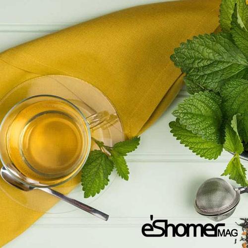 مجله خبری ایشومر دمنوش-بادرنجبویه-آرام-بخشی-قوی-برای-اعصاب-مجله-خبری-ایشومر دمنوش بادرنجبویه آرام بخشی قوی برای اعصاب تازه ها سبک زندگي  نوشیدنی گیاهی دمنوش خواص درمانی دمنوش چای بادرنجبویه Herbal Tea