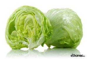 مجله خبری ایشومر شناخت-انواع-سبزیجات-و-خواص-درمانی-آنها-،-کاهو-1-مجله-خبری-ایشومر-300x200 شناخت انواع سبزیجات و خواص درمانی آنها ، کاهو سبک زندگي میوه درمانی  گیاهی گیاه سبزیجات سبزی درمان خواص درمانی خواص