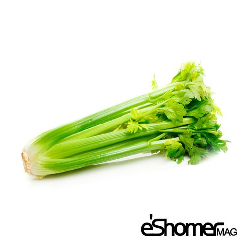 شناخت انواع سبزیجات و خواص درمانی آنها ، کرفس
