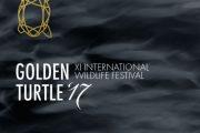 فراخوان جشنواره هنری بین المللی لاک پشت طلایی 2017