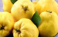 به و خواص ضد سرطانی آن در میوه درمانی