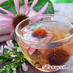 مجله خبری ایشومر -سرخارگل-اکیناسه-و-خواص-درمانی-آن-در-تقویت-سیستم-ایمنی-بدن-مجله-خبری-ایشومر-300x300 دمنوش سرخارگل ( اکیناسه ) و خواص درمانی آن در تقویت سیستم ایمنی بدن تازه ها سبک زندگي  نوشیدنی شربت دمنوش گیاهی دمنوش خواص درمانی دمنوش چای تقویت سیستم ایمنی بدن Herbal Tea