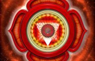 معرفی چاکرای ریشه ( مولادهارا ) در یوگا