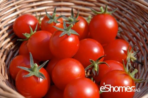 مجله خبری ایشومر گوجه-فرنگی-و-خواص-ضد-سرطانی-آن-در-میوه-درمانی-مجله-خبری-ایشومر شناخت انواع سبزیجات و خواص درمانی آنها ، گوجه فرنگی سبک زندگي میوه درمانی  میوه درمانی گیاهی گوجه فرنگی ضد سرطان سبزیجات سبزی درمان کننده بیماری قلبی خواص درمانی سبزیجات