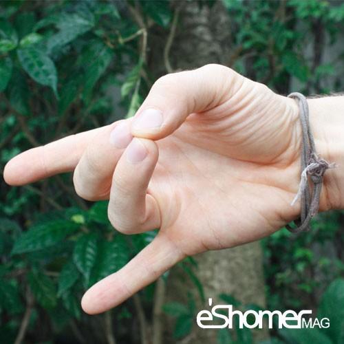 مجله خبری ایشومر با-انواع-مودرا-در-یوگا-آشنا-شوید-آپان-مودرا-مودرای-نیرو-مجله-خبری-ایشومر با انواع مودرا در یوگا آشنا شوید آپان مودرا مودرای نیرو سبک زندگي کامیابی  یوگا درمانی یوگا مودرا آموزش یوگا