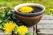 دمنوش قاصدک در درمان بیماری های کبد خواص درمانی دمنوش ها