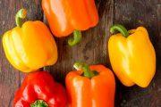 شناخت انواع سبزیجات خواص درمانی سبزیجات ، فلفل دلمه ای