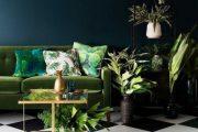 انواع رنگ سبز در طراحی داخلی فضاهای مدرن