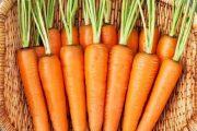شناخت انواع سبزیجات ، خواص درمانی سبزیجات ، هویج