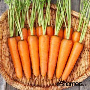 مجله خبری ایشومر انواع-سبزیجات-خواص-درمانی-هویج-300x300 شناخت انواع سبزیجات ، خواص درمانی سبزیجات ، هویج سبک زندگي میوه درمانی  هویج ضد سرطان سبزیجات خواص درمانی سبزیجات