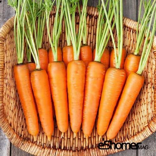 مجله خبری ایشومر انواع-سبزیجات-خواص-درمانی-هویج شناخت انواع سبزیجات ، خواص درمانی سبزیجات ، هویج سبک زندگي میوه درمانی  هویج ضد سرطان سبزیجات خواص درمانی سبزیجات