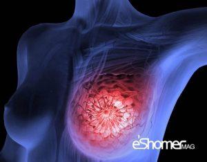 مجله خبری ایشومر پیشگیری-سرطان-سینه-رژیم-غذایی-مدیترانه-ای-مجله-خبری-ایشومر-300x234 پیشگیری از سرطان سینه با مصرف رژیم غذایی مدیترانه ای سبک زندگي سلامت و پزشکی  سرطان سینه رژیم غذایی مدیترانه ای رژیم غذایی پیشگیری از سرطان سینه