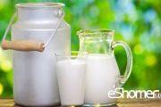درمان پوکی استخوان با این مواد غذایی کلسیم دار 5