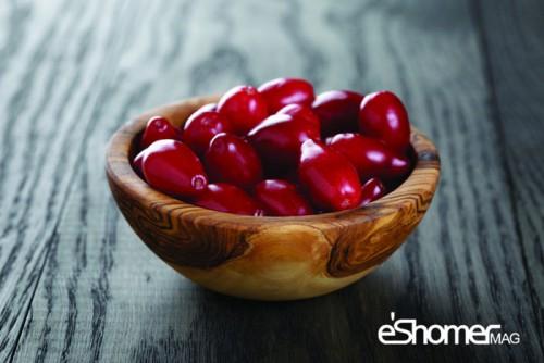 زغال اخته و خواص ضد سرطانی آن در میوه درمانی