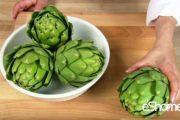 شناخت انواع سبزیجات ، خواص درمانی سبزیجات ، کنگر فرنگی ( آرتیشو )