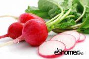 شناخت انواع سبزیجات ، خواص درمانی سبزیجات ، تربچه